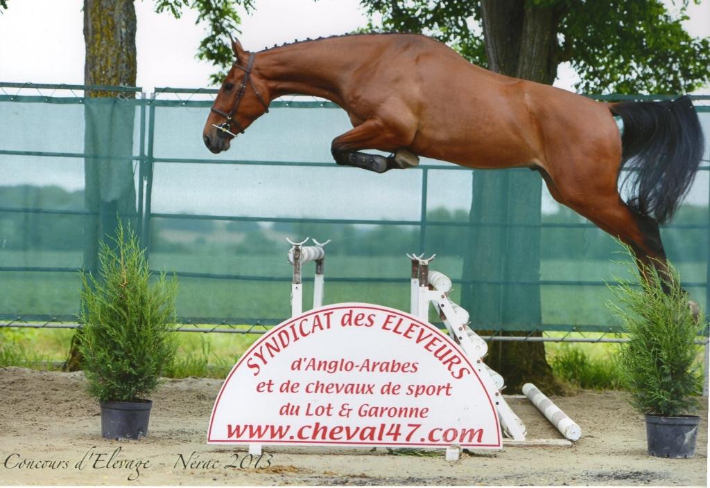 Cartapus aux Journées d'élevage de Nérac